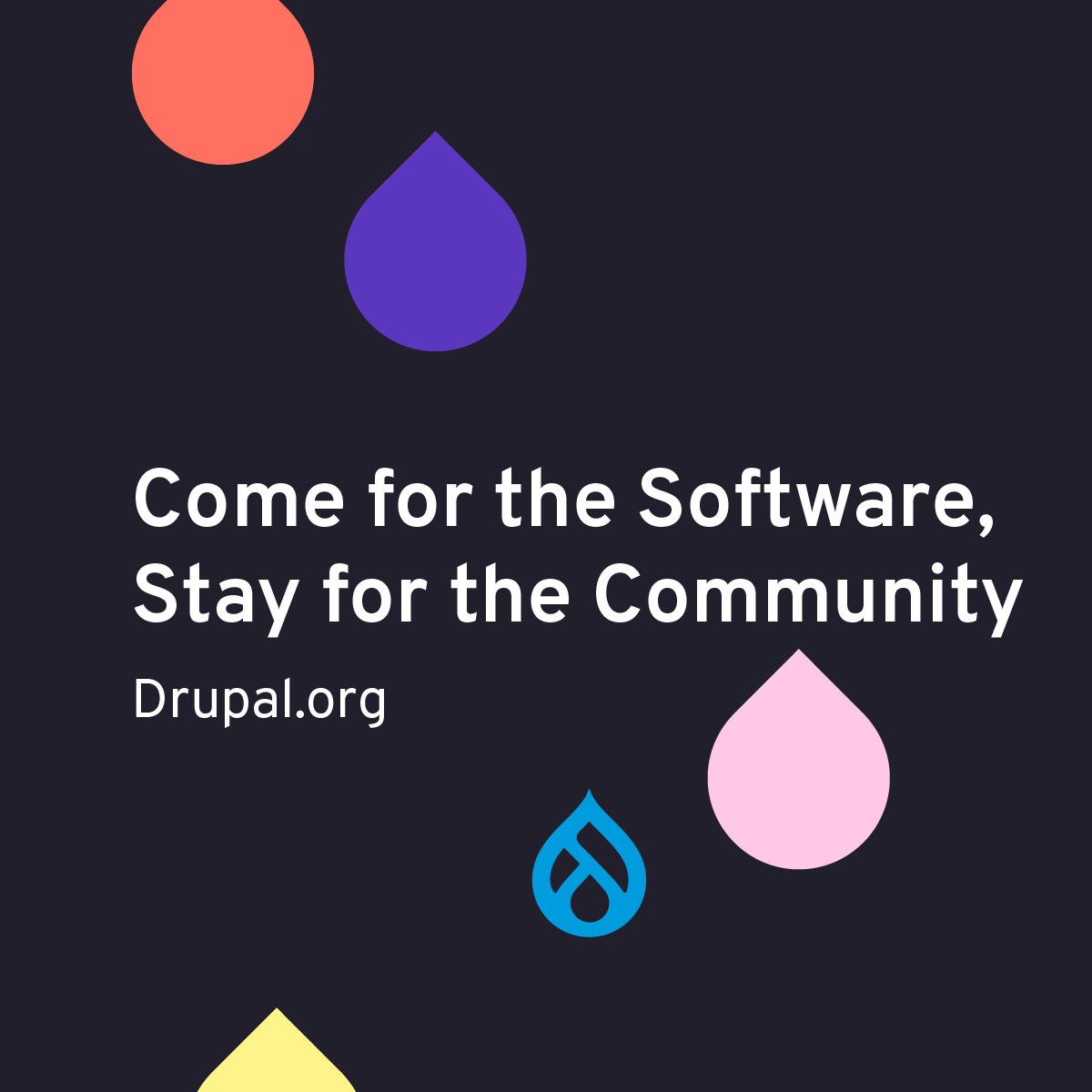 Came for the Software, Stay for the Community