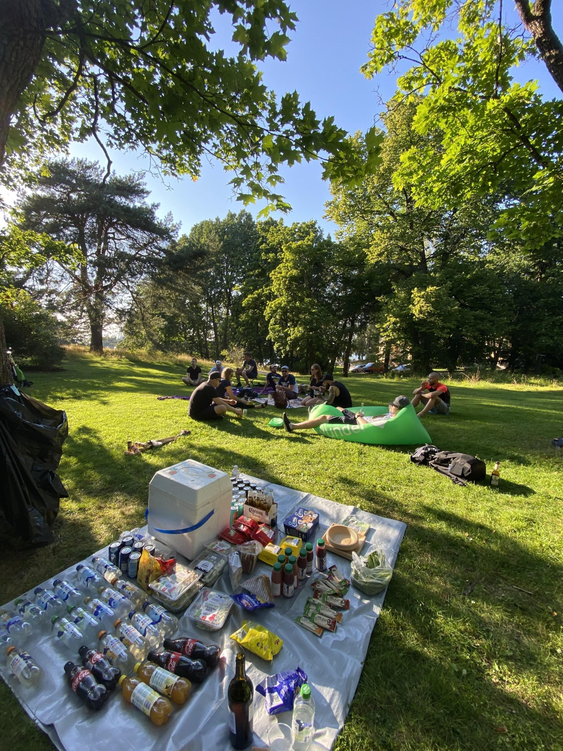 Helsinki office people enjoying a nice picnic in the park